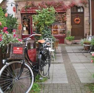 1Strasbourg bike