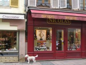 1Strasbourg dog