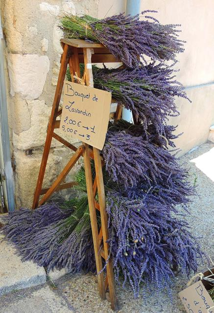 Bouquets of Lavender to take home